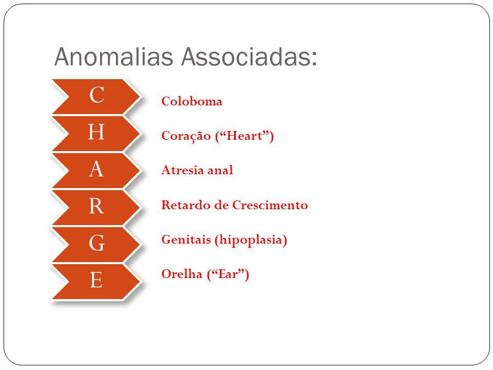 Anomalias Associadas: C H A R G E Coloboma Coração (Heart) Atresia anal Retardo de Crescimento Genitais (hipoplasia) Orelha (Ear)