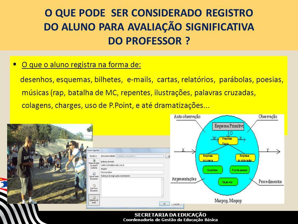 SECRETARIA DA EDUCAÇÃO Coordenadoria de Gestão da Educação Básica O QUE PODE SER CONSIDERADO REGISTRO DO ALUNO PARA AVALIAÇÃO SIGNIFICATIVA DO PROFESS