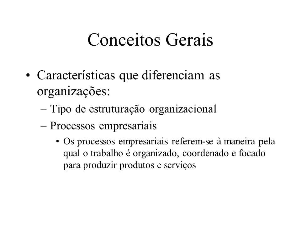 Características que diferenciam as organizações: –Tipo de estruturação organizacional –Processos empresariais Os processos empresariais referem-se à maneira pela qual o trabalho é organizado, coordenado e focado para produzir produtos e serviços Conceitos Gerais