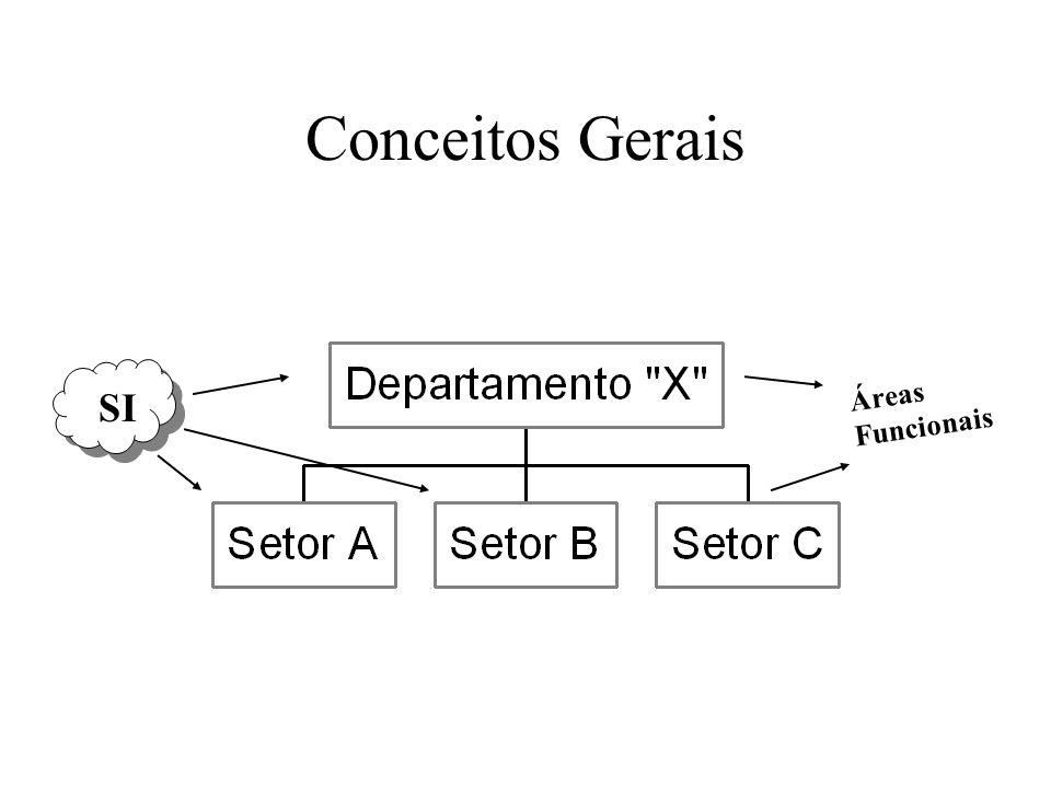 Conceitos Gerais SI Áreas Funcionais