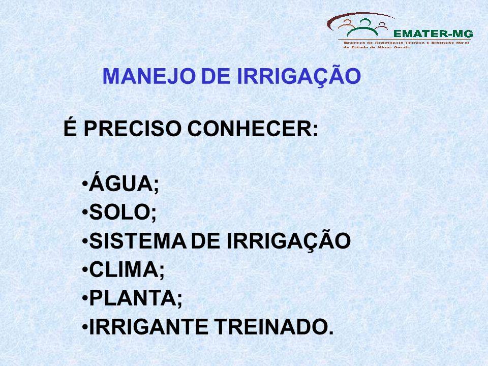 É PRECISO CONHECER: ÁGUA; SOLO; SISTEMA DE IRRIGAÇÃO CLIMA; PLANTA; IRRIGANTE TREINADO.