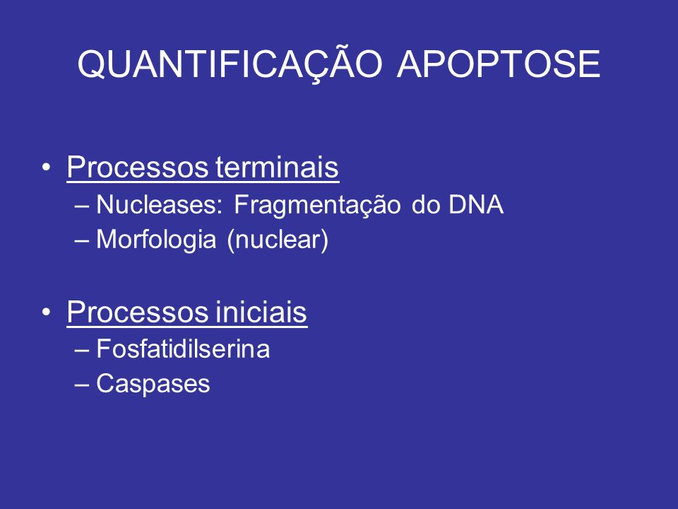 Processos terminais –Nucleases: Fragmentação do DNA –Morfologia (nuclear) Processos iniciais –Fosfatidilserina –Caspases QUANTIFICAÇÃO APOPTOSE