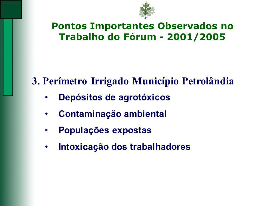 Pontos Importantes Observados no Trabalho do Fórum - 2001/2005 3. Perímetro Irrigado Município Petrolândia Depósitos de agrotóxicos Contaminação ambie