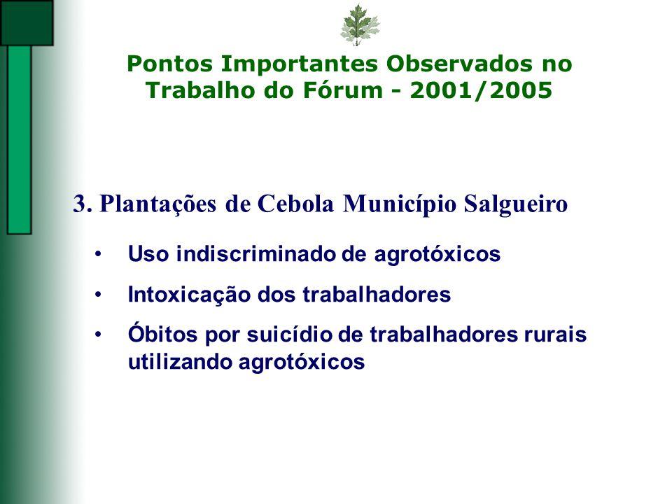 Pontos Importantes Observados no Trabalho do Fórum - 2001/2005 3. Plantações de Cebola Município Salgueiro Uso indiscriminado de agrotóxicos Intoxicaç