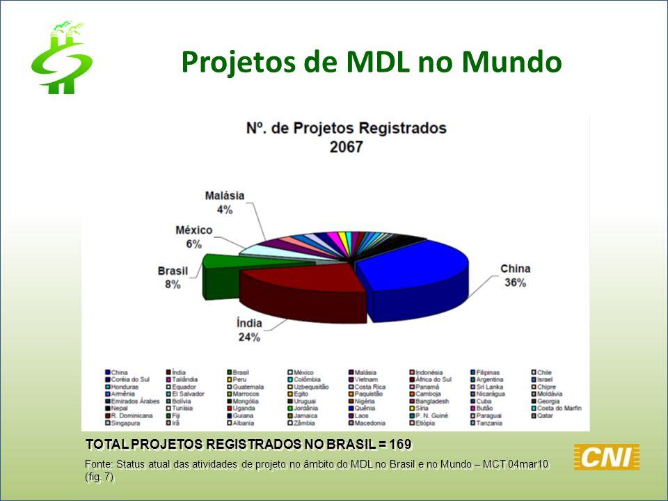 TOTAL PROJETOS REGISTRADOS NO BRASIL = 169 Fonte: Status atual das atividades de projeto no âmbito do MDL no Brasil e no Mundo – MCT 04mar10 (fig. 7)
