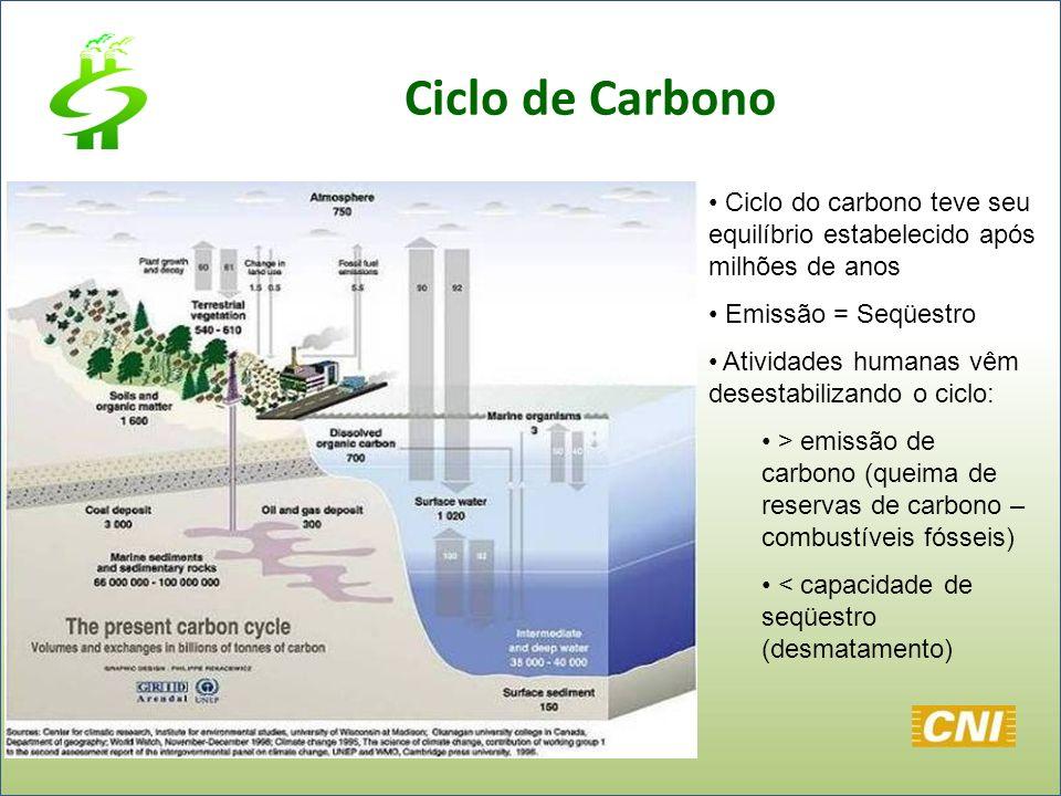 Ciclo de Carbono Ciclo do carbono teve seu equilíbrio estabelecido após milhões de anos Emissão = Seqüestro Atividades humanas vêm desestabilizando o