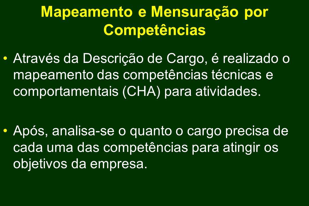 Mapeamento e Mensuração por Competências Através da Descrição de Cargo, é realizado o mapeamento das competências técnicas e comportamentais (CHA) par