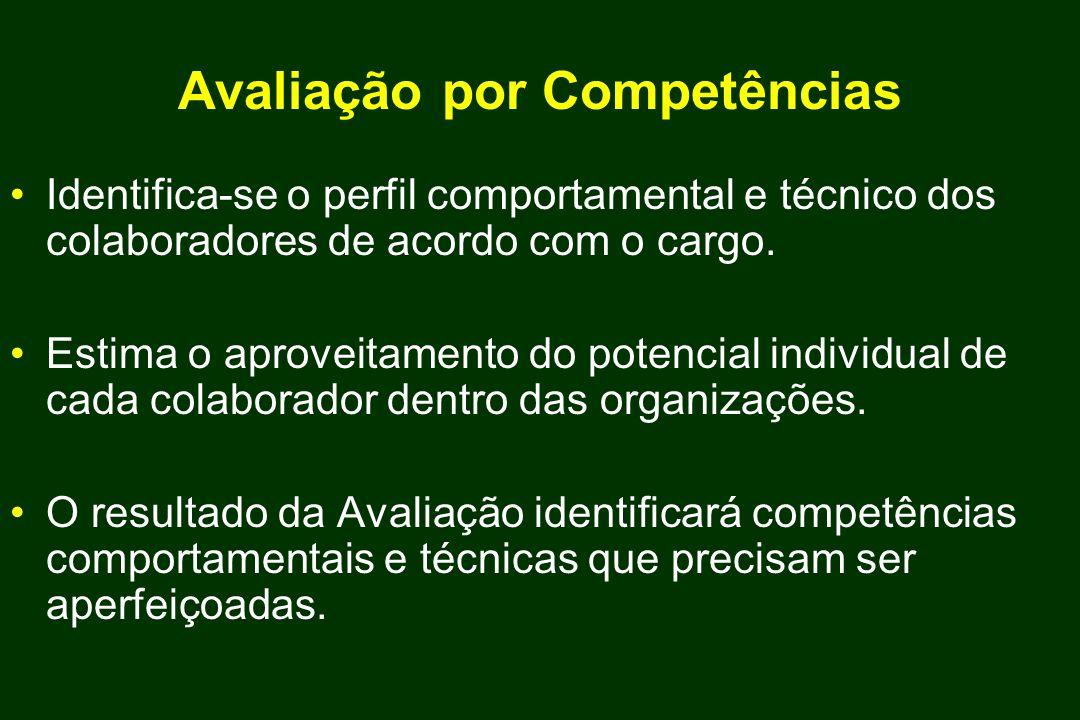 Avaliação por Competências Identifica-se o perfil comportamental e técnico dos colaboradores de acordo com o cargo. Estima o aproveitamento do potenci