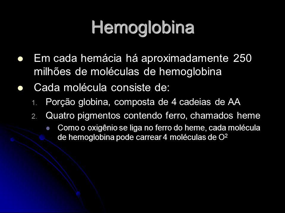 Hemoglobina Quando 4 oxigênios estão ligados na hemoglobina dizemos que está 100% saturada Quando a hemoglobina está ligada a 3 ou menos oxigênios, dizemos que está parcialmente saturada A ligação com o oxigênio se deve à alta pressão deste nos pulmões (oxihemoglobina) Quanto mais oxigênio maior a afinidade deste para a hemoglobina Quando o primeiro oxigênio se liga na hemoglobina o segundo se liga mais rapidamente, o terceiro ainda mais rápido e assim sucessivamente