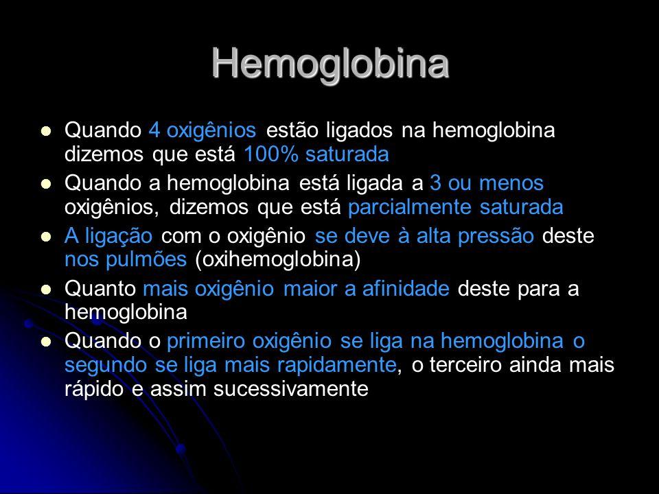 Hemoglobina Ferro Heme Globina