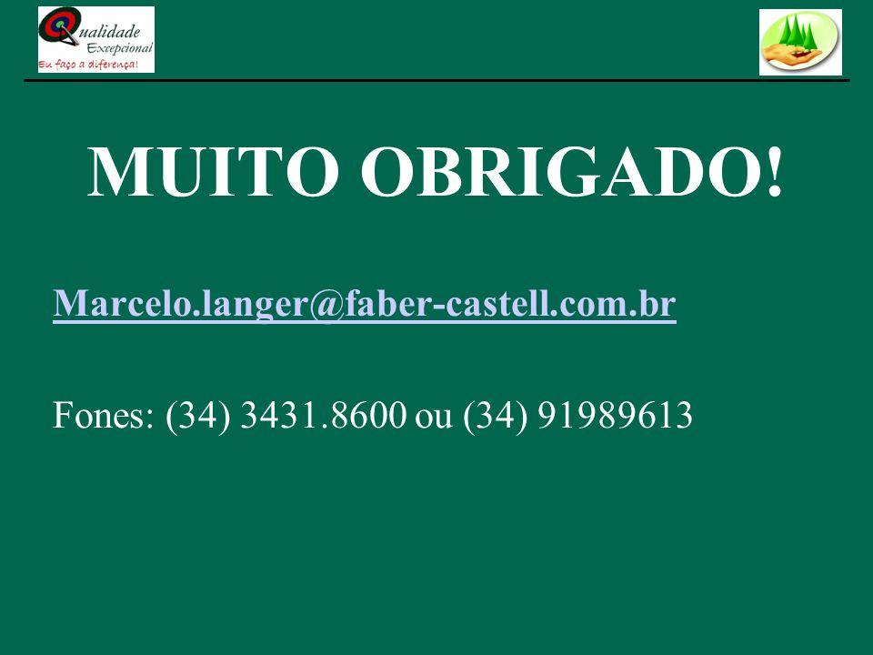 MUITO OBRIGADO! Marcelo.langer@faber-castell.com.br Fones: (34) 3431.8600 ou (34) 91989613
