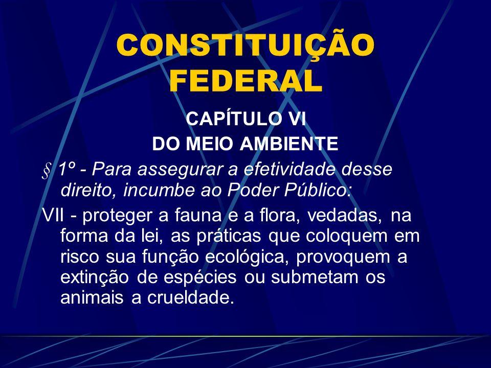 CAPÍTULO VI DO MEIO AMBIENTE § 1º - Para assegurar a efetividade desse direito, incumbe ao Poder Público: VII - proteger a fauna e a flora, vedadas, n