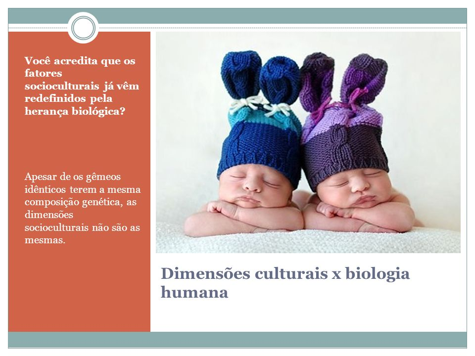 Dimensões culturais x biologia humana Você acredita que os fatores socioculturais já vêm redefinidos pela herança biológica? Apesar de os gêmeos idênt