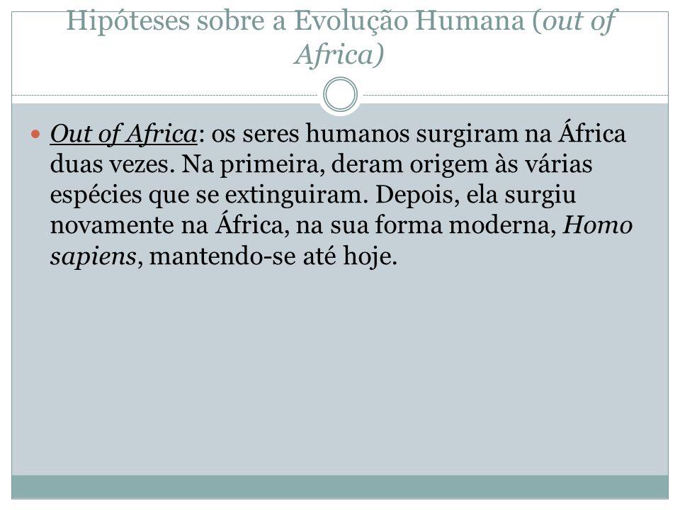 Hipóteses sobre a Evolução Humana (out of Africa) Out of Africa: os seres humanos surgiram na África duas vezes. Na primeira, deram origem às várias e