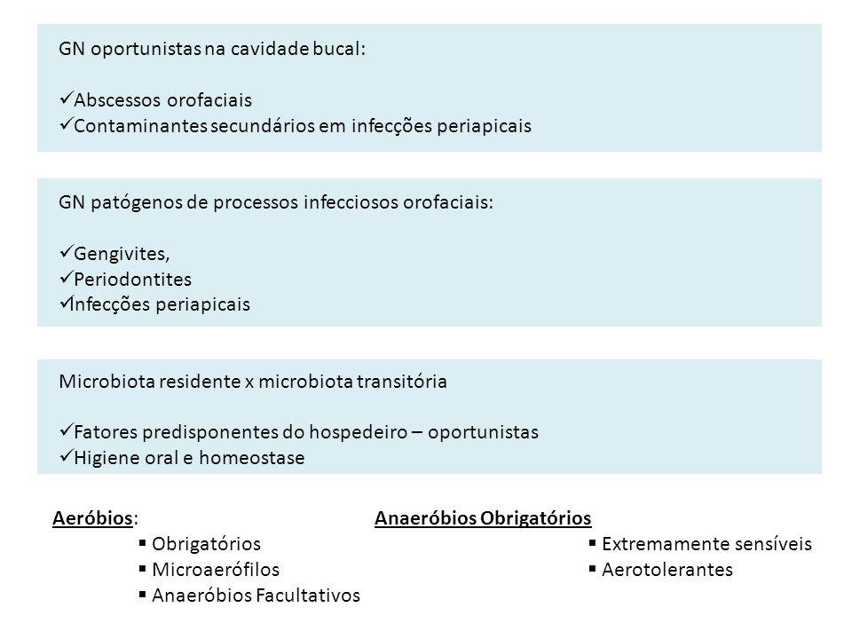 Aeróbios: Obrigatórios Microaerófilos Anaeróbios Facultativos Anaeróbios Obrigatórios Extremamente sensíveis Aerotolerantes GN oportunistas na cavidad