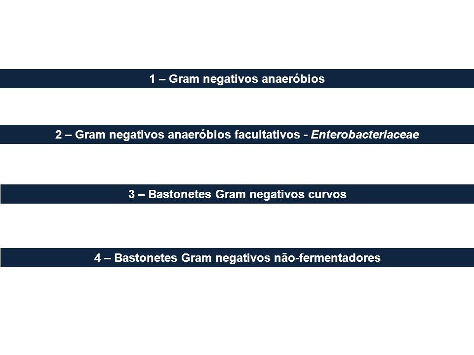 1 – Gram negativos anaeróbios 2 – Gram negativos anaeróbios facultativos - Enterobacteriaceae 3 – Bastonetes Gram negativos curvos 4 – Bastonetes Gram