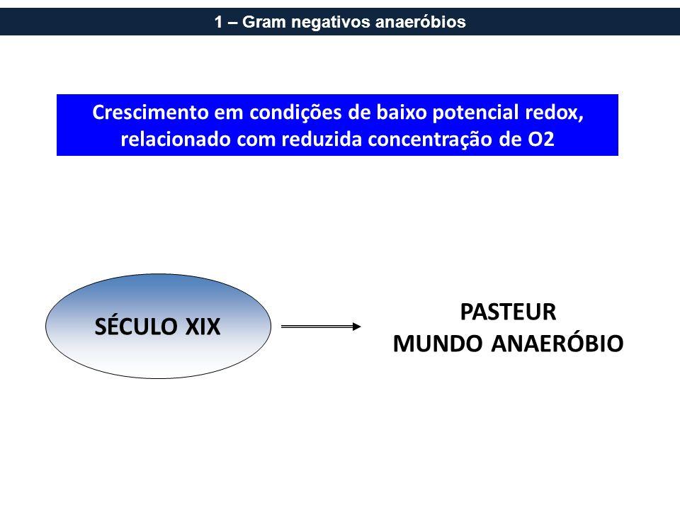 Crescimento em condições de baixo potencial redox, relacionado com reduzida concentração de O2 SÉCULO XIX PASTEUR MUNDO ANAERÓBIO 1 – Gram negativos a