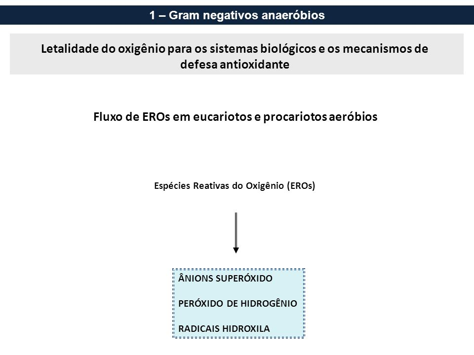 Estratégias de defesa: mecanismos antioxidantes Catalases e Peroxidases 1 – Gram negativos anaeróbios