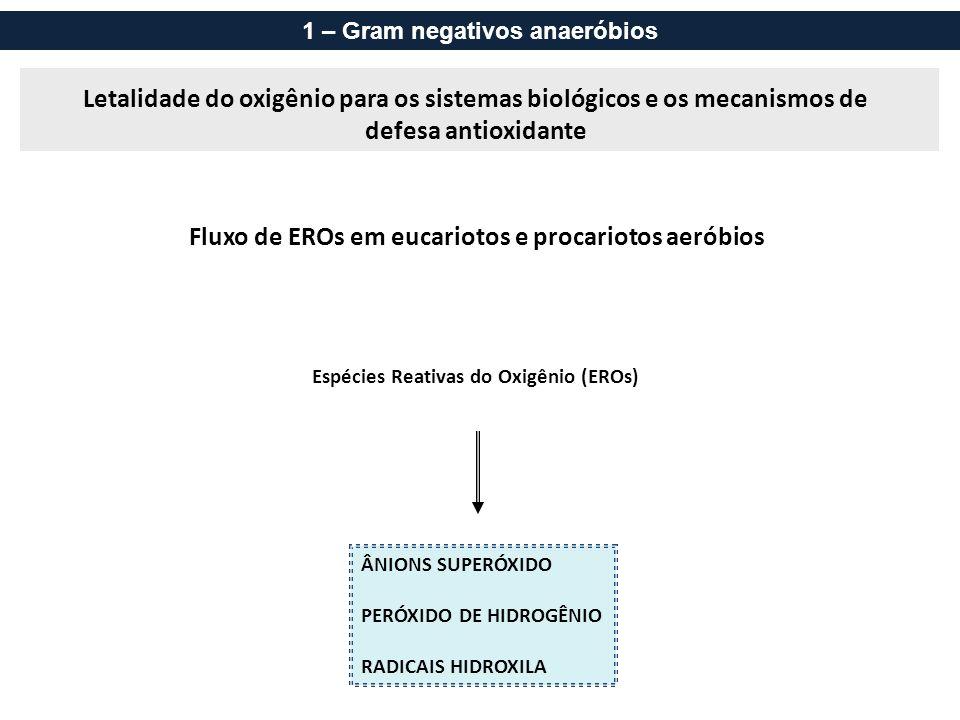 Campylobacter Bastonetes G- curvos, microaerófilos.