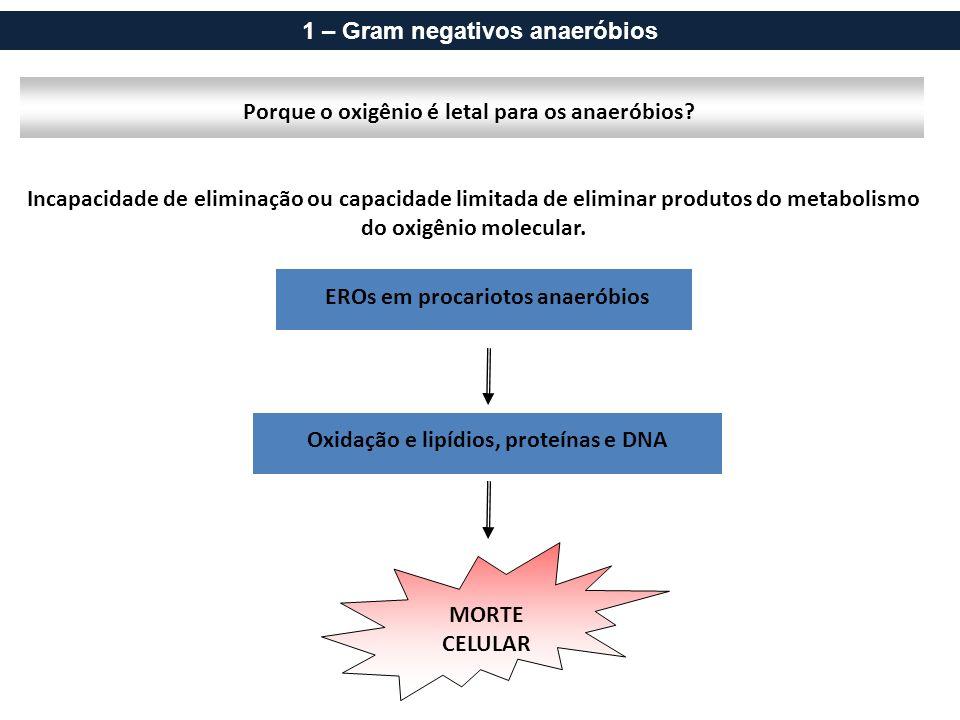 Incapacidade de eliminação ou capacidade limitada de eliminar produtos do metabolismo do oxigênio molecular. Porque o oxigênio é letal para os anaerób