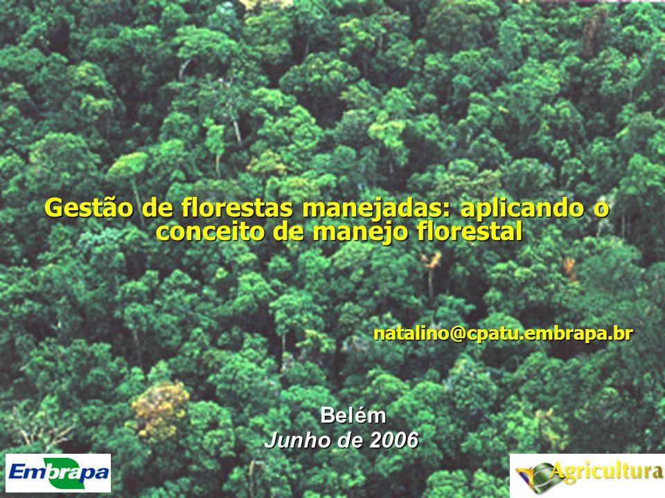 Resumo 1.Contextualização -Há muita floresta e não há floresta .