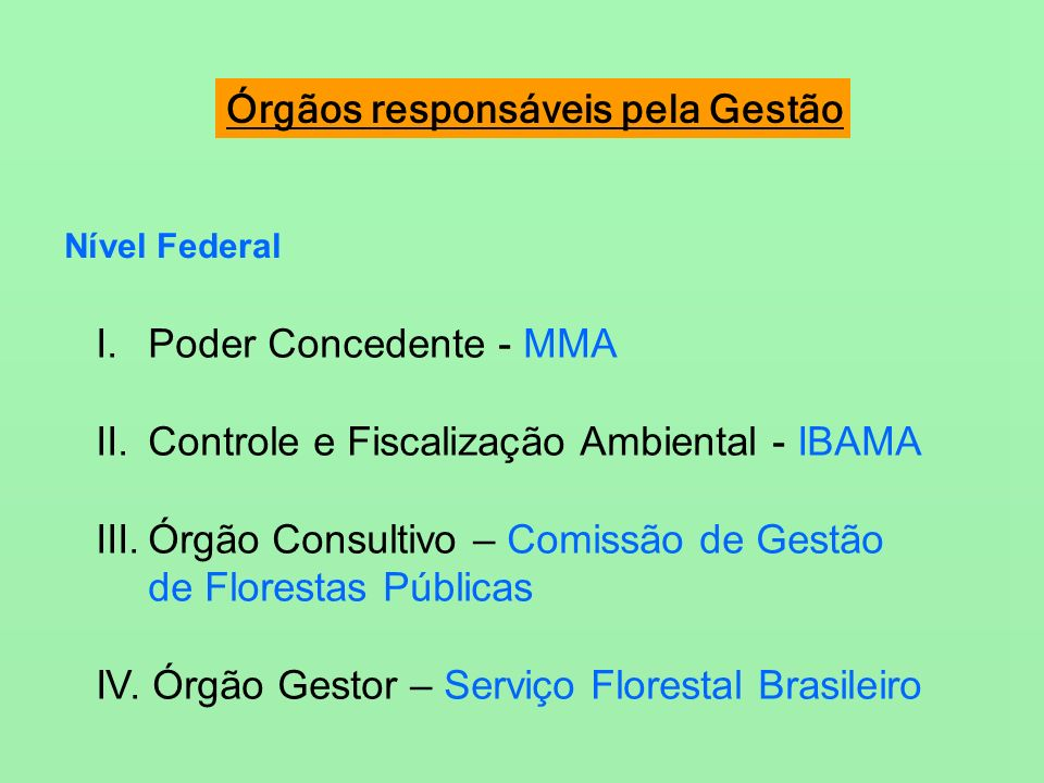 Com o estado do Pará planeja realizar a gestão do manejo florestal? Foto:FFT
