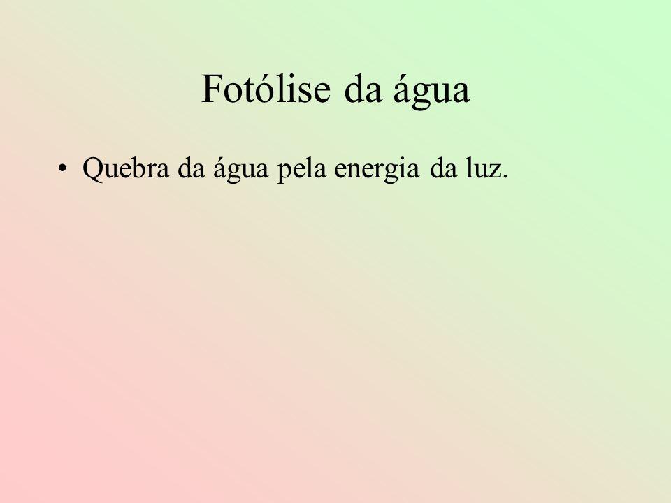Fotólise da água Quebra da água pela energia da luz.
