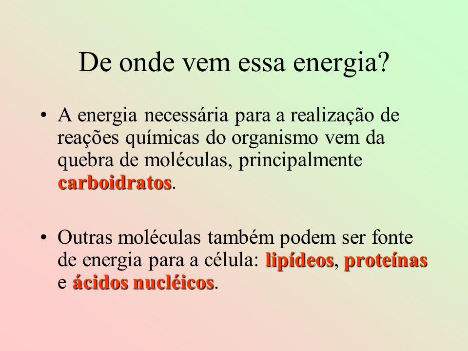 De onde vem essa energia? carboidratosA energia necessária para a realização de reações químicas do organismo vem da quebra de moléculas, principalmen