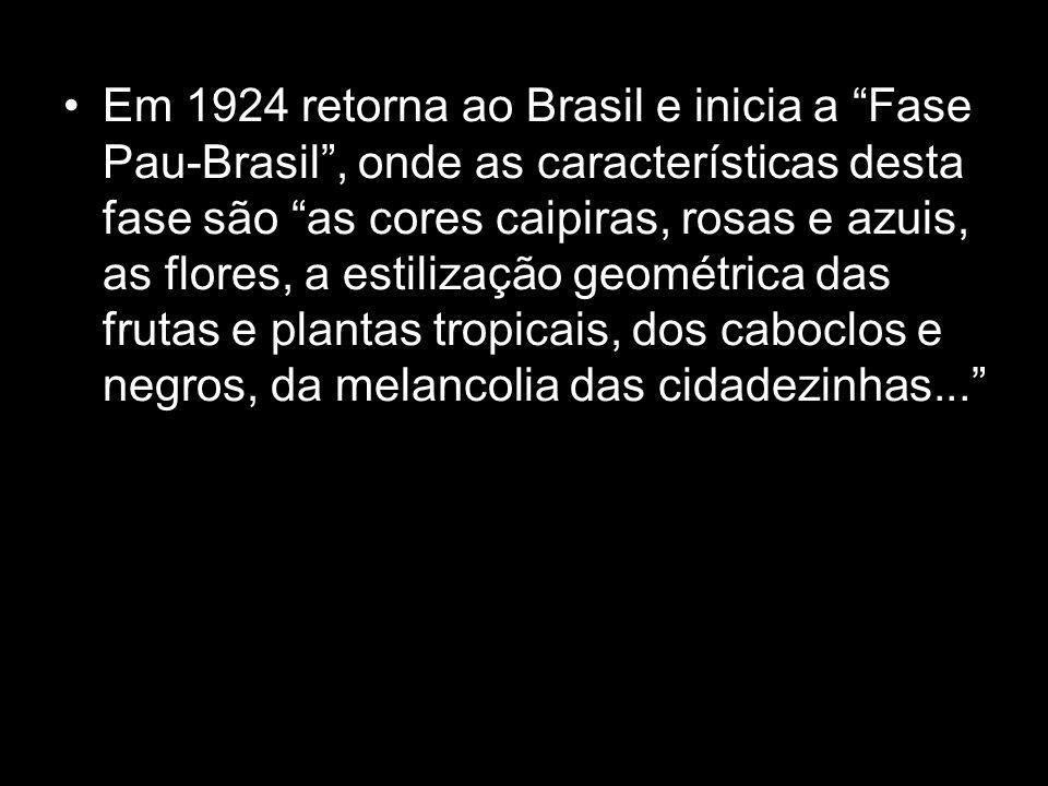 Em 1924 retorna ao Brasil e inicia a Fase Pau-Brasil, onde as características desta fase são as cores caipiras, rosas e azuis, as flores, a estilizaçã