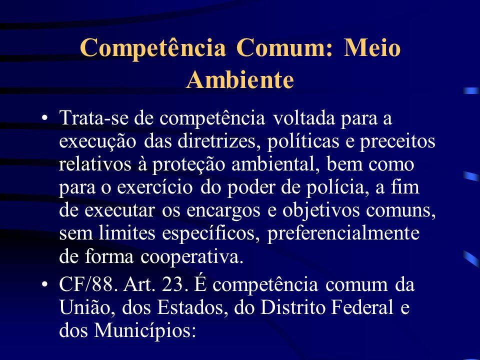 Competência Comum: Meio Ambiente Trata-se de competência voltada para a execução das diretrizes, políticas e preceitos relativos à proteção ambiental,
