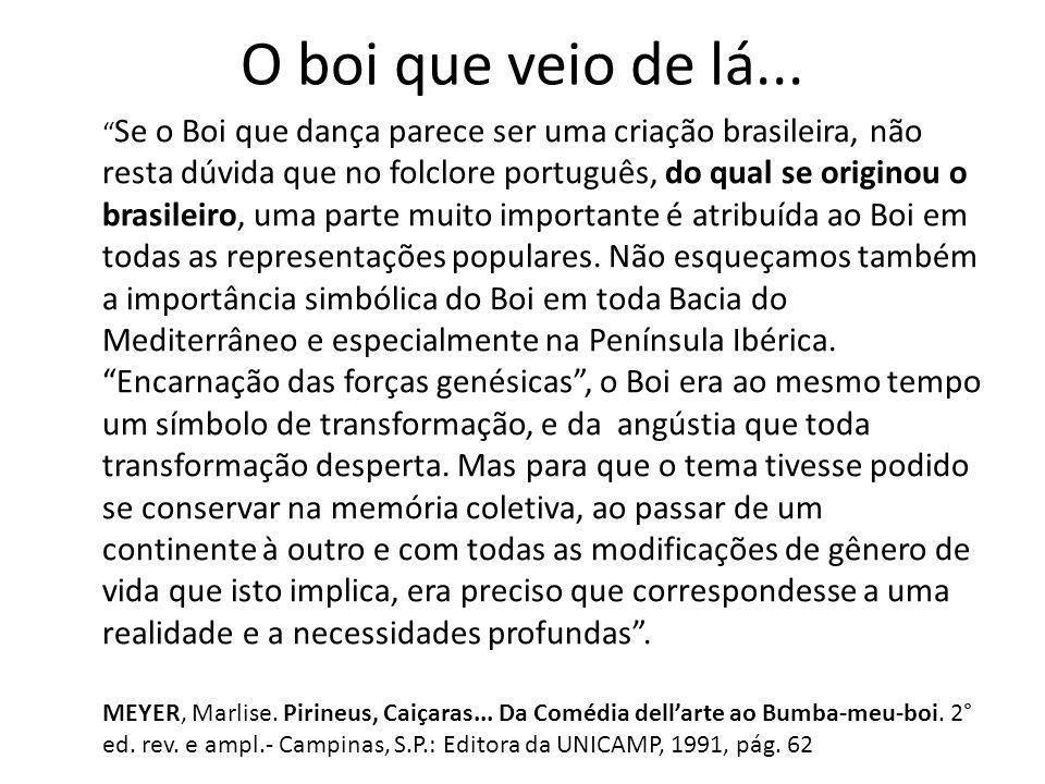 O boi que veio de lá... Se o Boi que dança parece ser uma criação brasileira, não resta dúvida que no folclore português, do qual se originou o brasil
