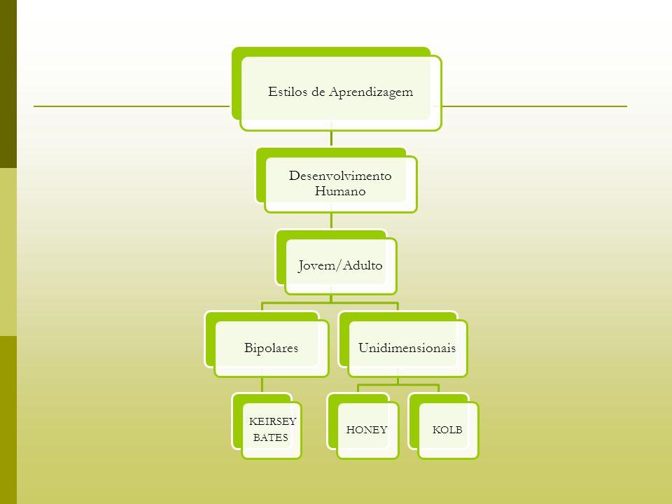 Estilos de Aprendizagem Desenvolvimento Humano Jovem/AdultoBipolares KEIRSEY BATES Unidimensionais HONEYKOLB
