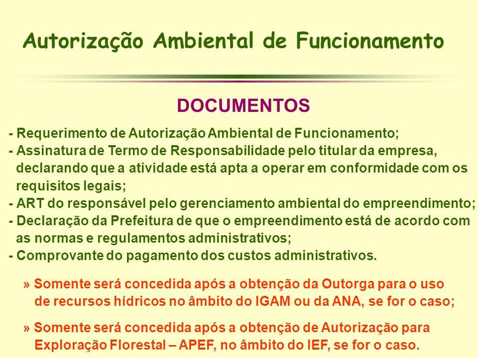 Autorização Ambiental de Funcionamento DOCUMENTOS - Requerimento de Autorização Ambiental de Funcionamento; - Assinatura de Termo de Responsabilidade