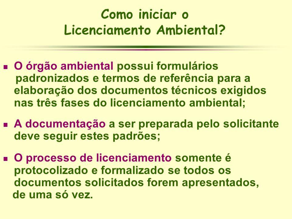 Como iniciar o Licenciamento Ambiental? O órgão ambiental possui formulários padronizados e termos de referência para a elaboração dos documentos técn