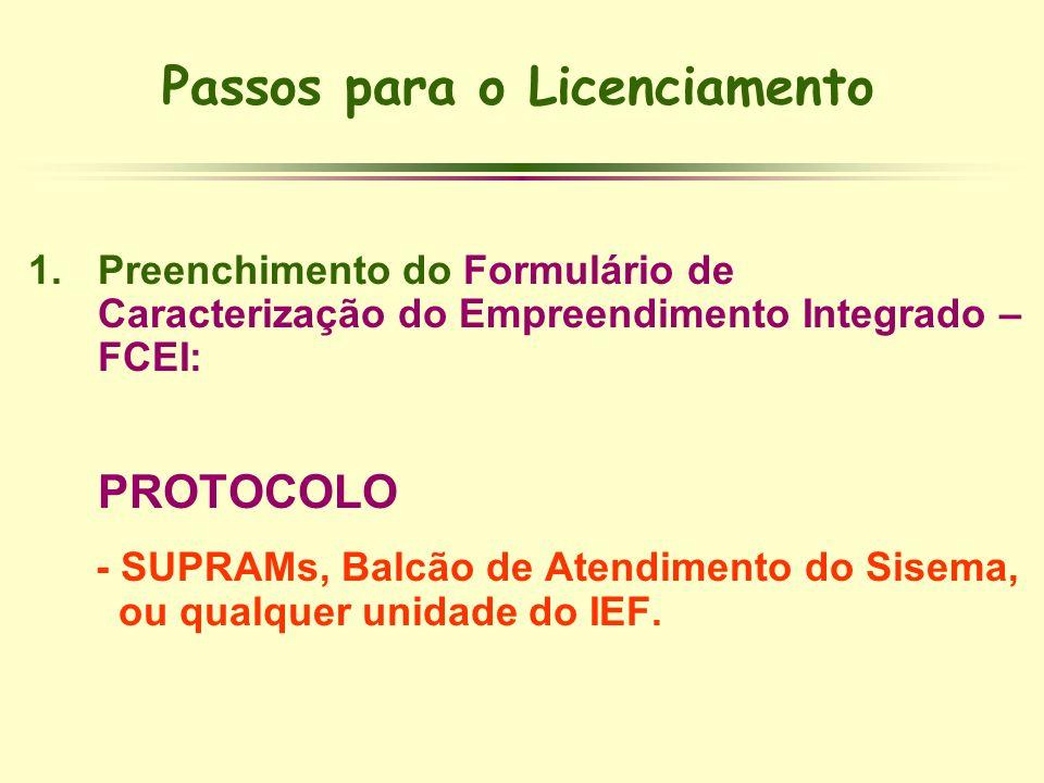 Passos para o Licenciamento 1.Preenchimento do Formulário de Caracterização do Empreendimento Integrado – FCEI: PROTOCOLO - SUPRAMs, Balcão de Atendim