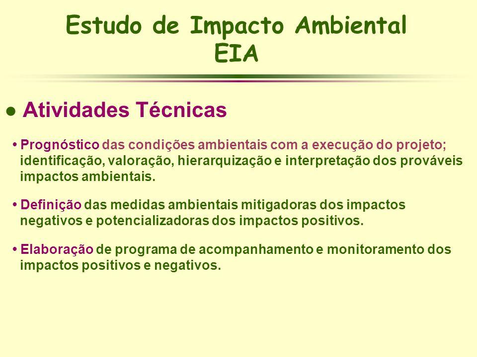 Estudo de Impacto Ambiental EIA l Atividades Técnicas Prognóstico das condições ambientais com a execução do projeto; identificação, valoração, hierar