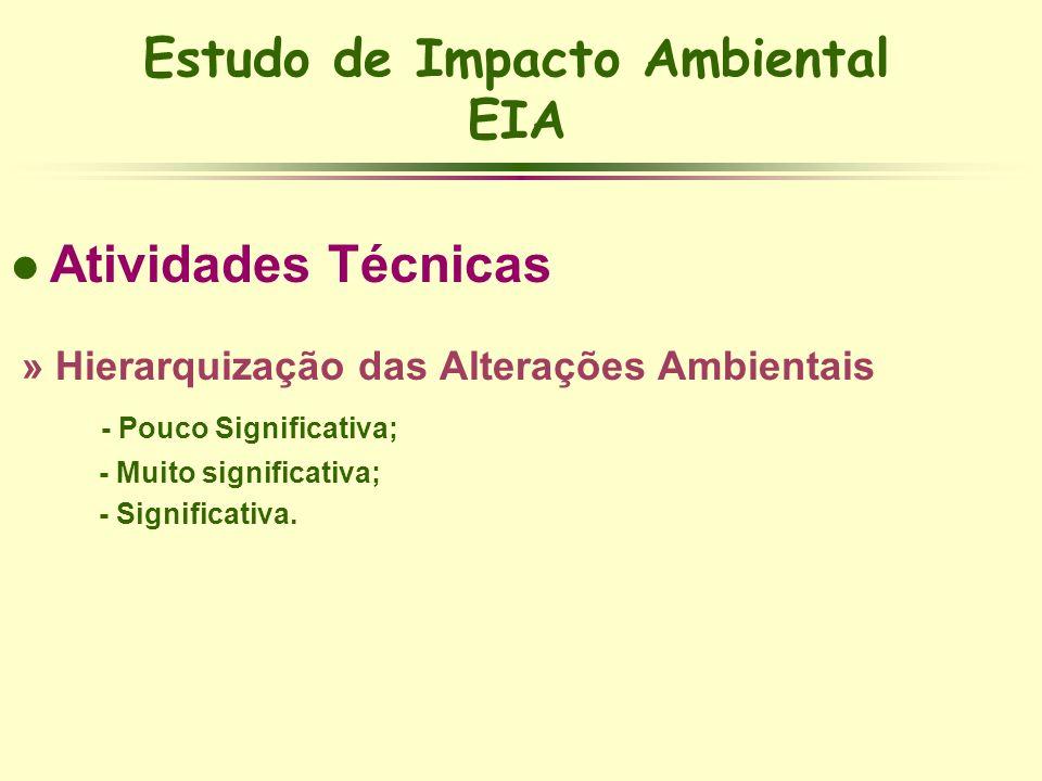 Estudo de Impacto Ambiental EIA l Atividades Técnicas » Hierarquização das Alterações Ambientais - Pouco Significativa; - Muito significativa; - Signi