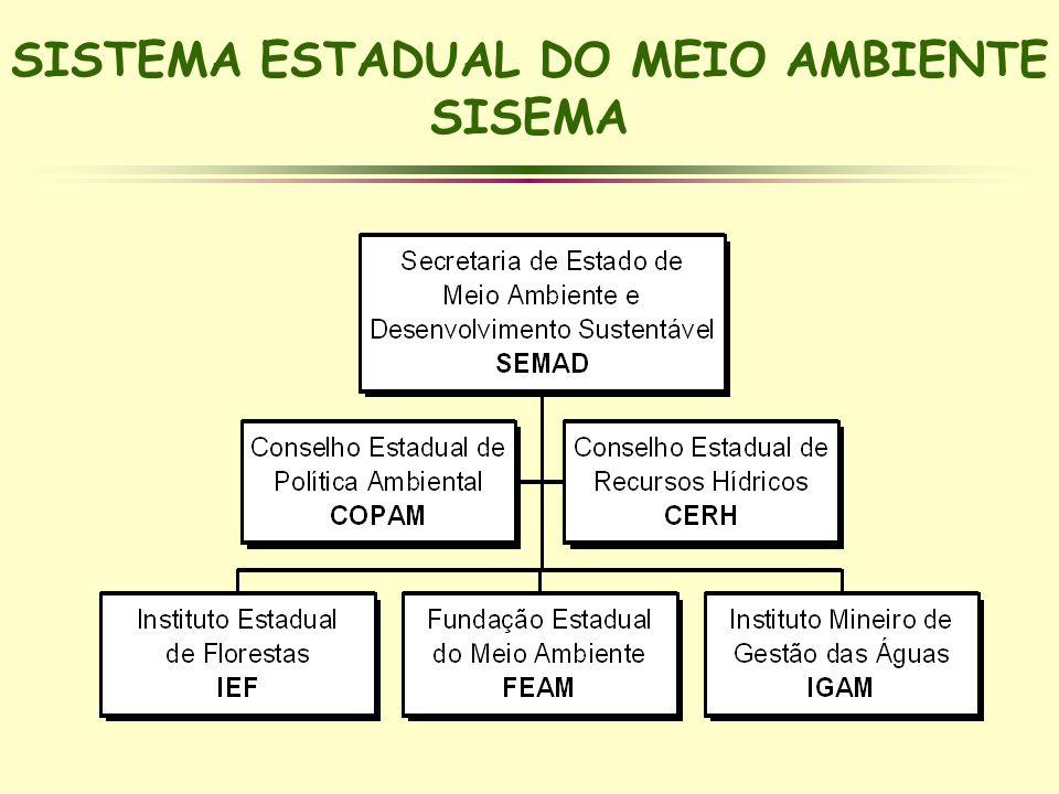 SISTEMA ESTADUAL DO MEIO AMBIENTE SISEMA