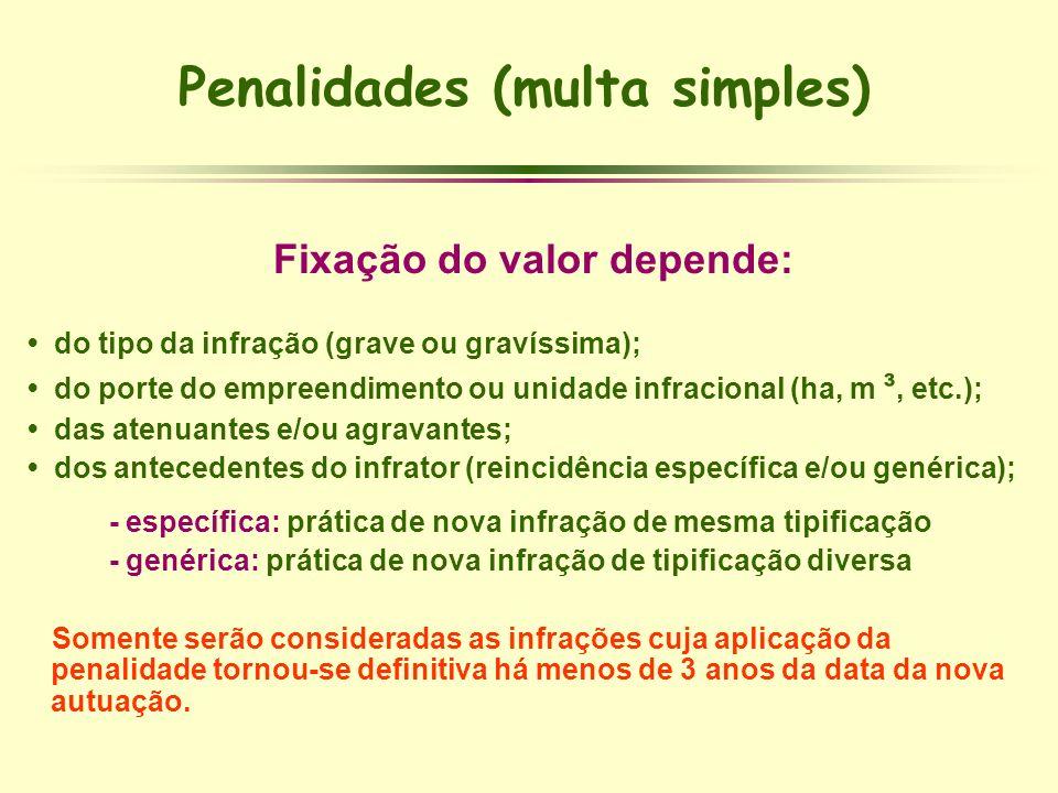 Penalidades (multa simples) Fixação do valor depende: do tipo da infração (grave ou gravíssima); do porte do empreendimento ou unidade infracional (ha