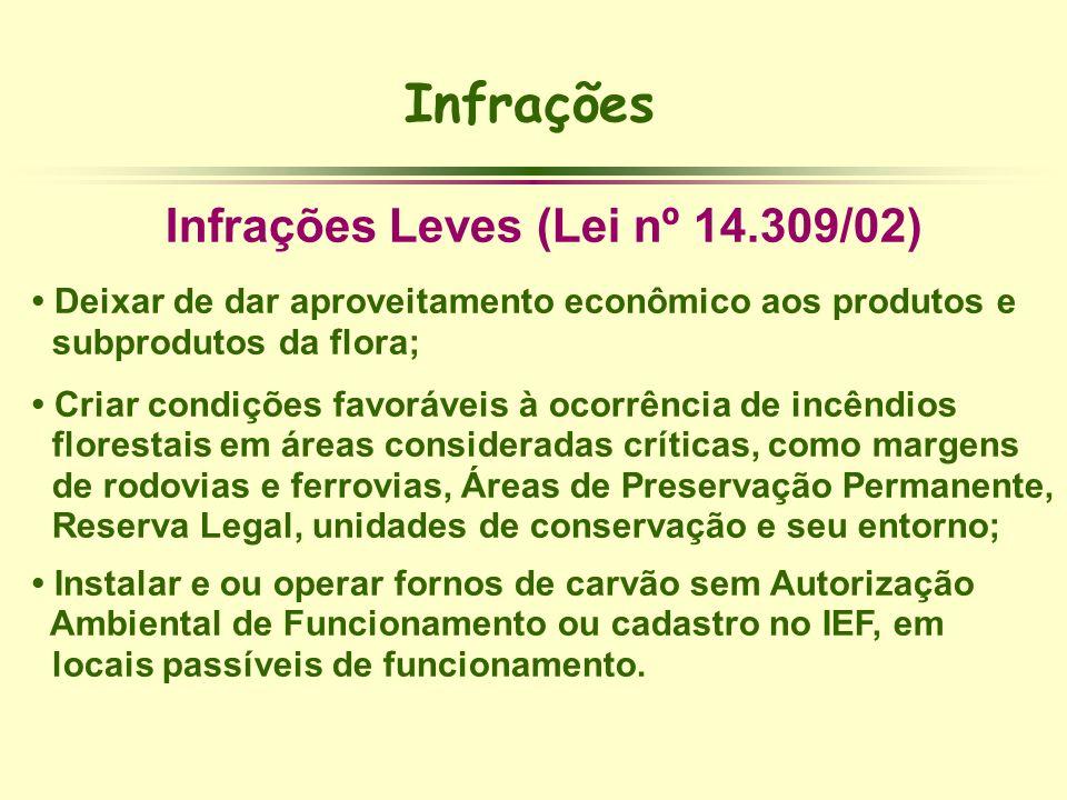 Infrações Infrações Leves (Lei nº 14.309/02) Deixar de dar aproveitamento econômico aos produtos e subprodutos da flora; Criar condições favoráveis à