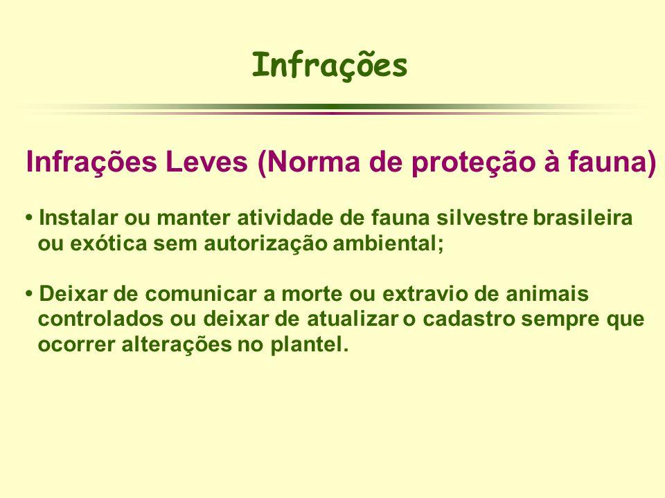 Infrações Infrações Leves (Norma de proteção à fauna) Instalar ou manter atividade de fauna silvestre brasileira ou exótica sem autorização ambiental;