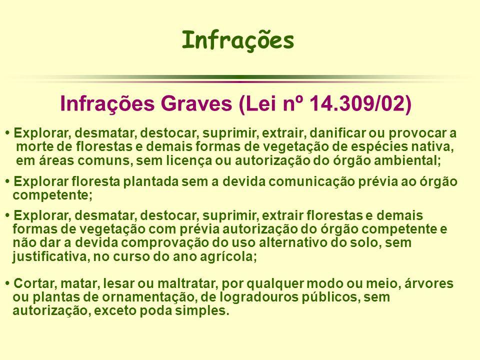 Infrações Infrações Graves (Lei nº 14.309/02) Explorar, desmatar, destocar, suprimir, extrair, danificar ou provocar a morte de florestas e demais for
