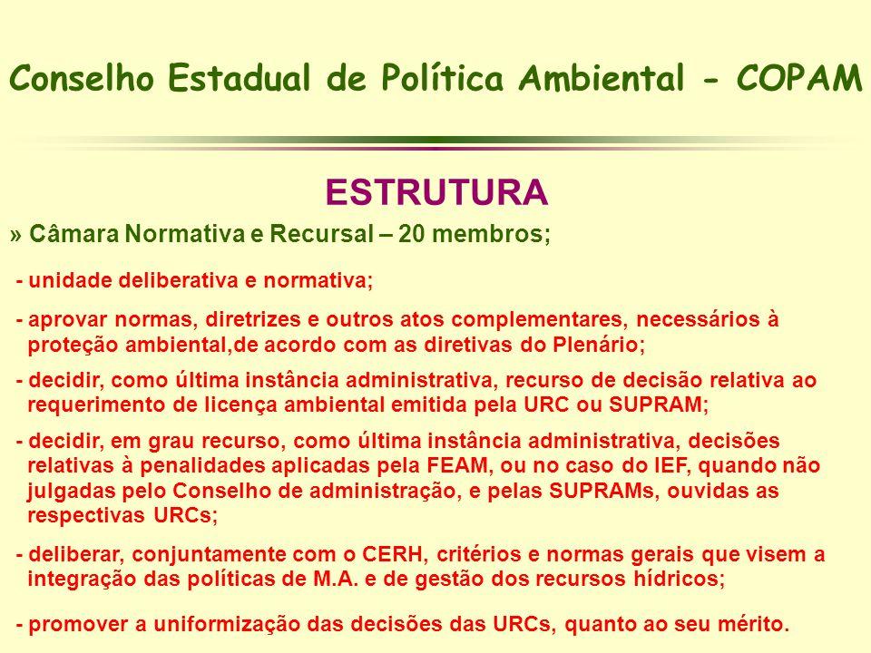 Conselho Estadual de Política Ambiental - COPAM ESTRUTURA » Câmara Normativa e Recursal – 20 membros; - unidade deliberativa e normativa; - aprovar no