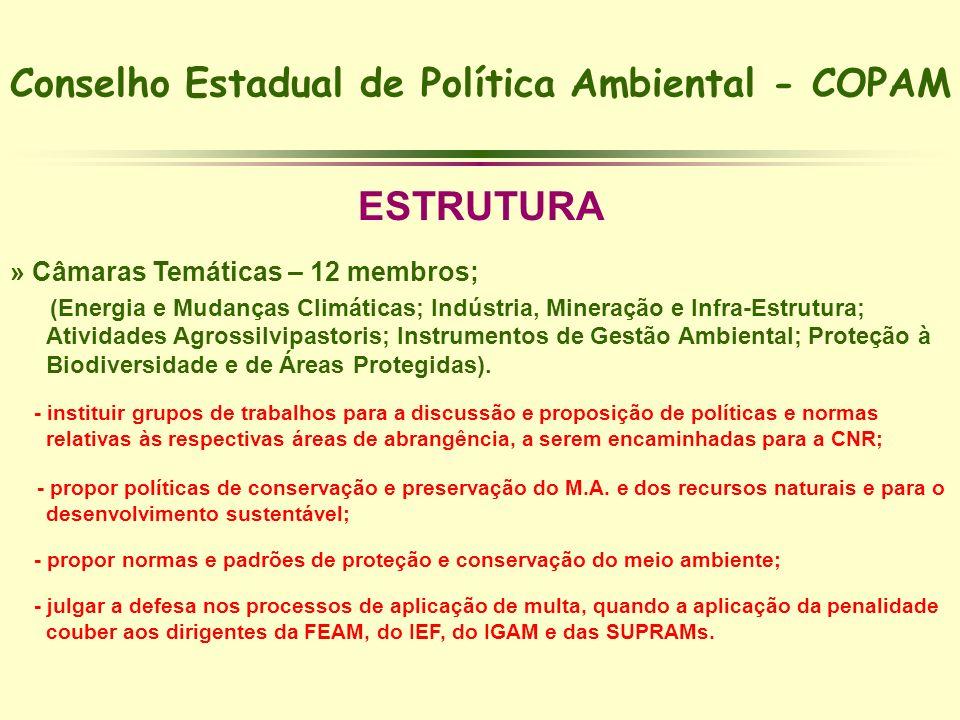 Conselho Estadual de Política Ambiental - COPAM ESTRUTURA » Câmaras Temáticas – 12 membros; (Energia e Mudanças Climáticas; Indústria, Mineração e Inf