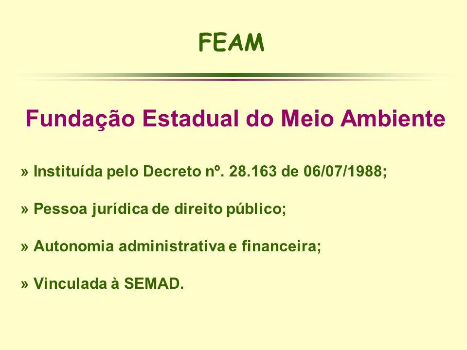FEAM Fundação Estadual do Meio Ambiente » Instituída pelo Decreto nº. 28.163 de 06/07/1988; » Pessoa jurídica de direito público; » Autonomia administ