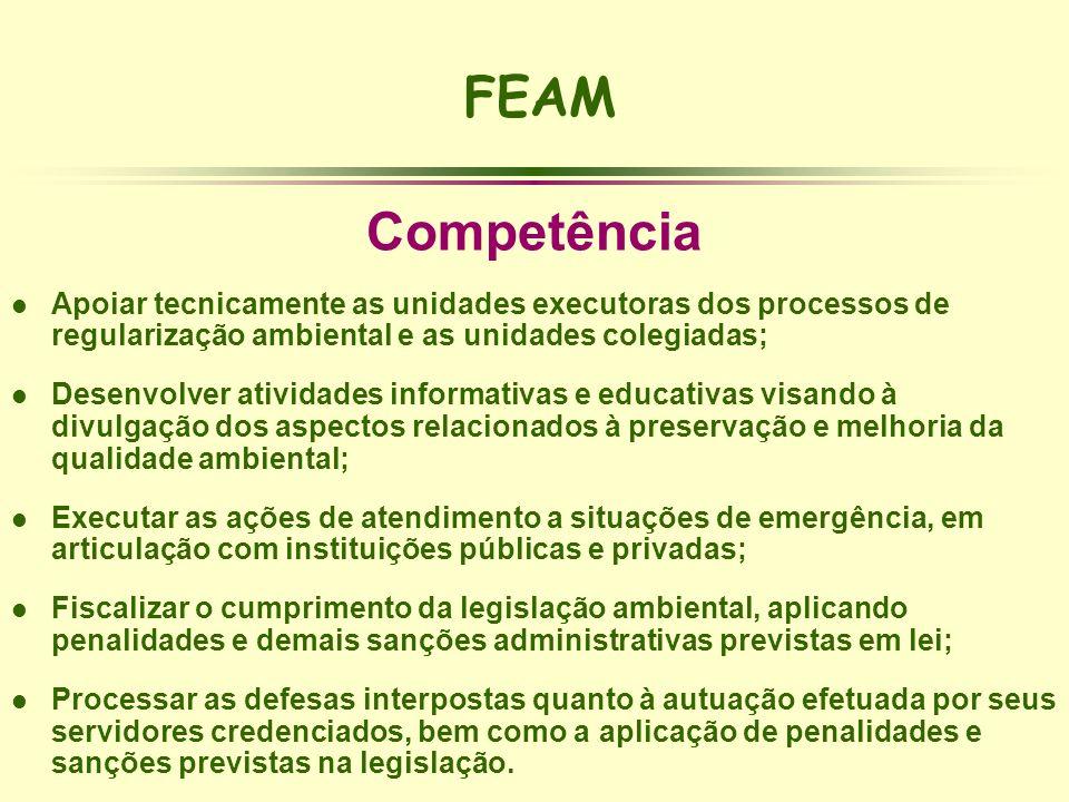 FEAM Competência l Apoiar tecnicamente as unidades executoras dos processos de regularização ambiental e as unidades colegiadas; l Desenvolver ativida