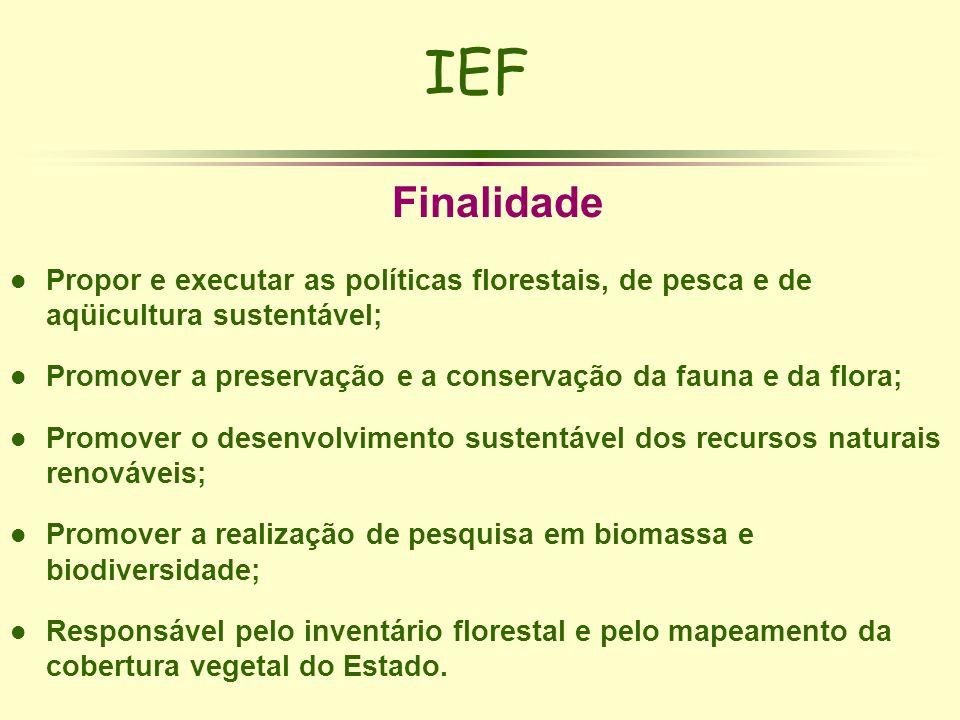 IEF Finalidade l Propor e executar as políticas florestais, de pesca e de aqüicultura sustentável; l Promover a preservação e a conservação da fauna e