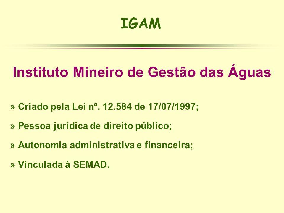 IGAM Instituto Mineiro de Gestão das Águas » Criado pela Lei nº. 12.584 de 17/07/1997; » Pessoa jurídica de direito público; » Autonomia administrativ
