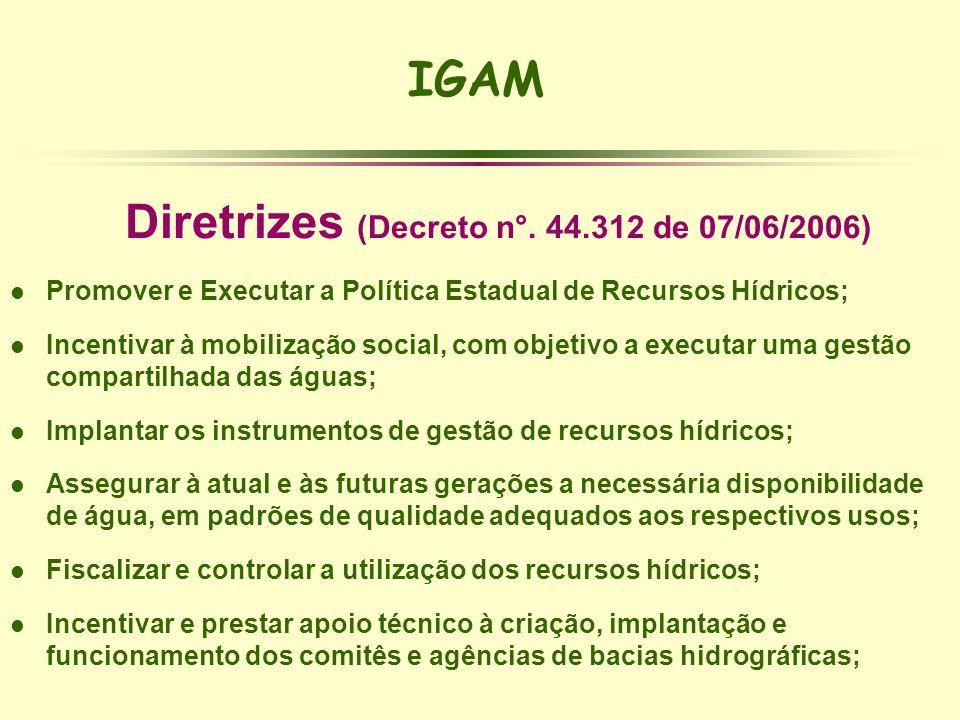 IGAM Diretrizes (Decreto n°. 44.312 de 07/06/2006) l Promover e Executar a Política Estadual de Recursos Hídricos; l Incentivar à mobilização social,