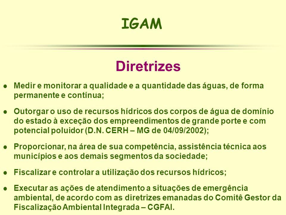 IGAM Diretrizes l Medir e monitorar a qualidade e a quantidade das águas, de forma permanente e contínua; l Outorgar o uso de recursos hídricos dos co